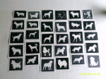 Dog themed stencils for etching on to glass     Poodle  Alsatian  West Highlander  Collie  Rotweiller